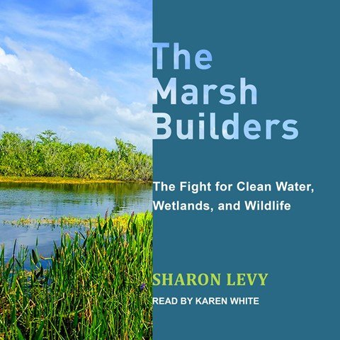 THE MARSH BUILDERS